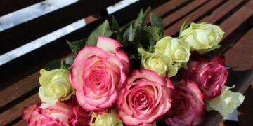Selamat Hari Kasih Sayang 17