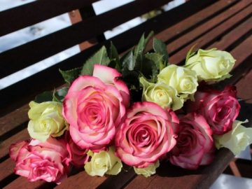 Selamat Hari Kasih Sayang 8