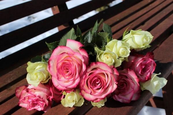 Selamat Hari Kasih Sayang 1