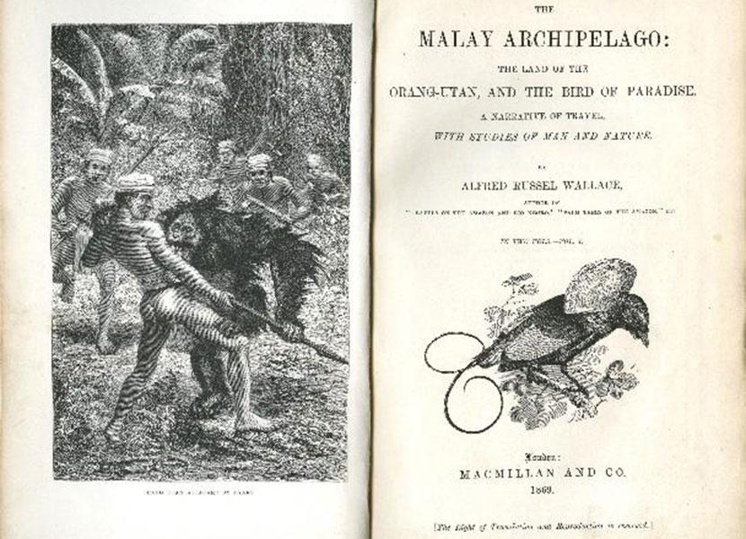 Wajah Fauna Nusantara Abad Silam Versi Wallace 4
