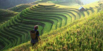 Pertanian Indonesia dalam Nadi Sejarah 12