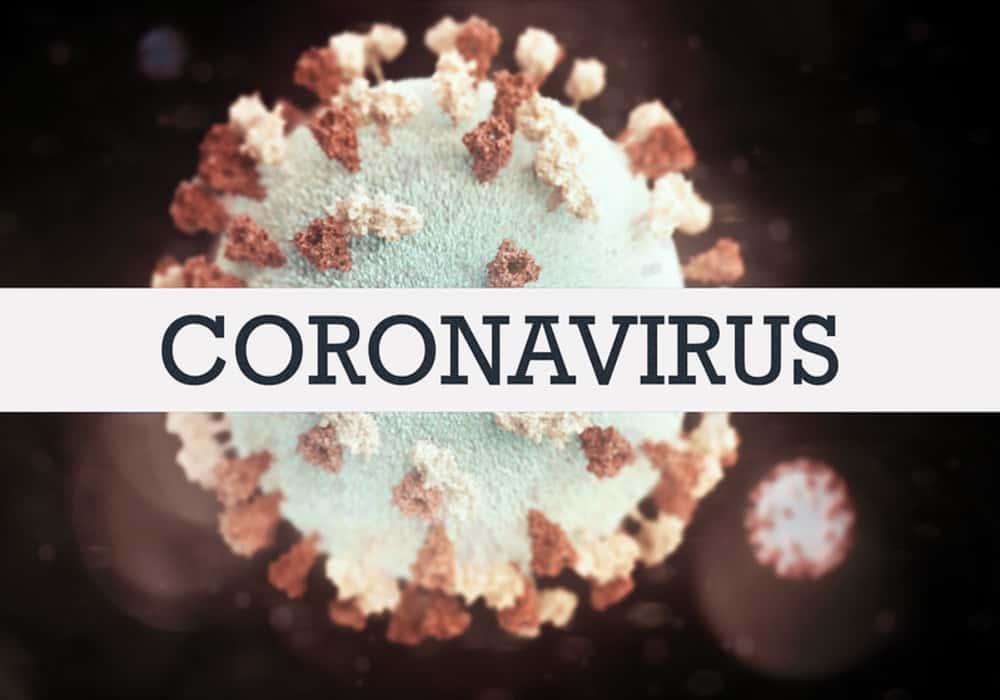 Pembelajaran Jarak Jauh Melalui Daring di Masa Pandemi Covid-19 3