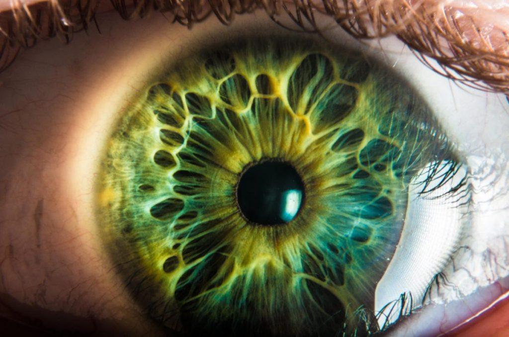 Bagian bagian Mata Manusia 1
