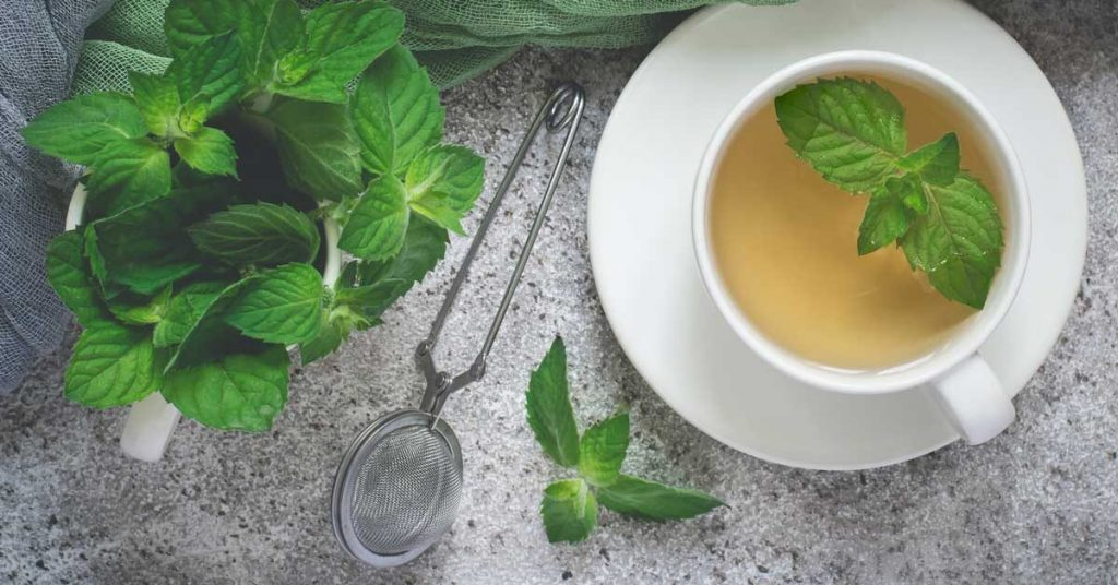 7 Jenis Minuman Teh Yang Menyehatkan, Cocok Untuk Diet & Kecantikan 9