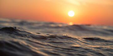 Apa Yang Terjadi Jika Air Laut Berubah Menjadi Air Tawar 25