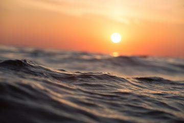 Apa Yang Terjadi Jika Air Laut Berubah Menjadi Air Tawar 9