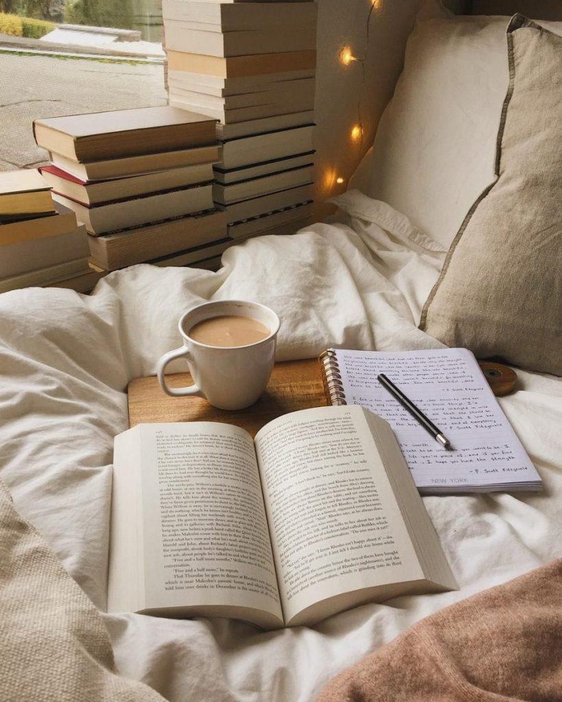 Tips & Cara Meningkatkan Minat Membaca Buku di Indonesia 3