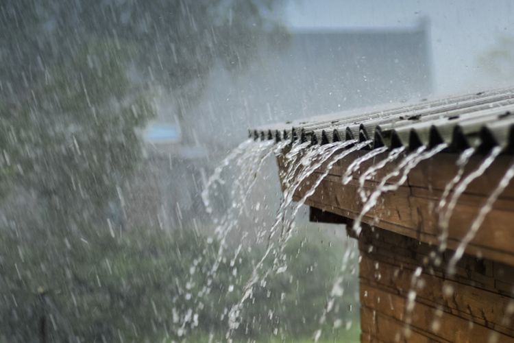 Hujan Tidak Pernah Mengeluh 5