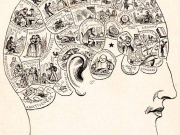 Saingan Dari Sains, 7 Pseudosains Ini Masih Banyak Dipercaya Orang 10