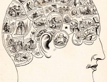 Saingan Dari Sains, 7 Pseudosains Ini Masih Banyak Dipercaya Orang 5