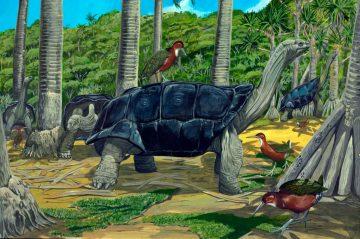 19 Spesies Reptile Yang Ternyata Sudah Punah 1
