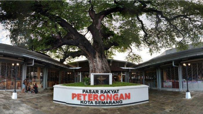 Pohon Asem Semarang