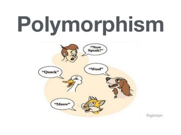 OOP (Object Oriented Programming) - Polymorphism 5