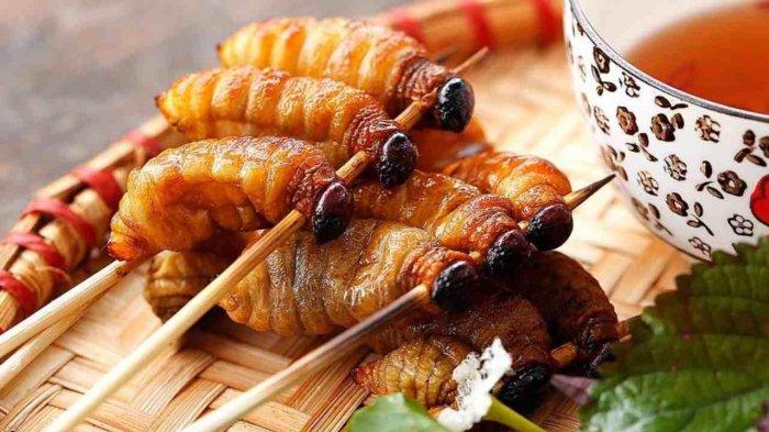 Ulat Sagu, Makanan Enak Berprotein Tinggi
