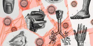 Serangan Varian Baru Virus Corona 13