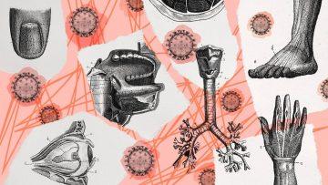 Serangan Varian Baru Virus Corona 1