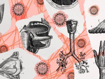 Serangan Varian Baru Virus Corona 7