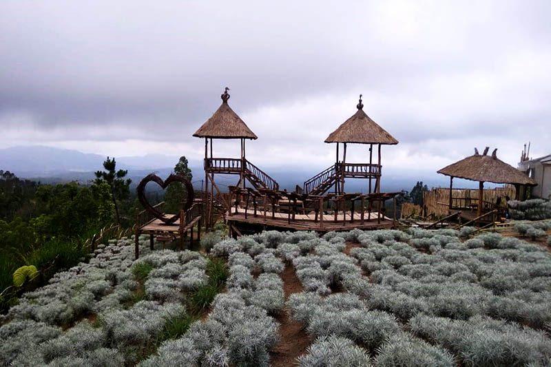 Unik dan Menakjubkan! Tempat Wisata Ini Wajib Kamu Kunjungi 12