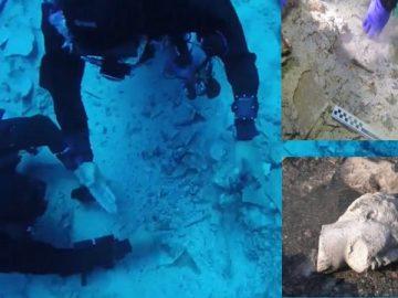 Artefak-Artefak Bawah Laut yang ditemukan di Salamis, Yunani, di Bekas Medan Pertempuran 2500 Tahun yang Lalu 7