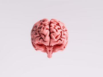 Solusi untuk meningkatkan daya ingatan yang lemah 5