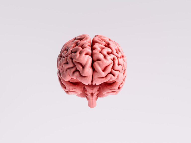 Solusi untuk meningkatkan daya ingatan yang lemah 1