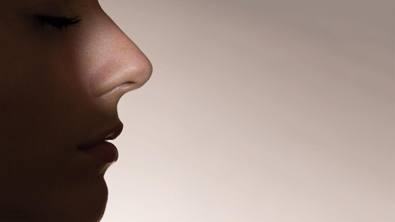 Fakta Unik Lubang Hidung Kiri dan Lubang Hidung Kanan 3