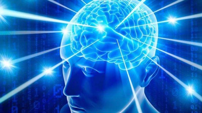 Solusi untuk meningkatkan daya ingatan yang lemah 4