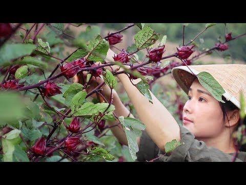 5 Food Vlogger Wanita Cina Yang Recommended Untuk Ditonton 4
