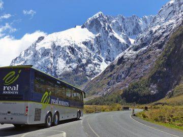 Milford Road, Jalan Terindah di Selandia Baru 3