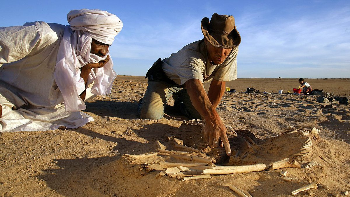 Terungkap! 5 Rahasia dan Penemuan Dibalik Pasir Gurun Sahara 4
