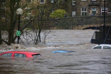 Cape-Cape Tanam Pohon Tapi Masih Banjir Juga 8
