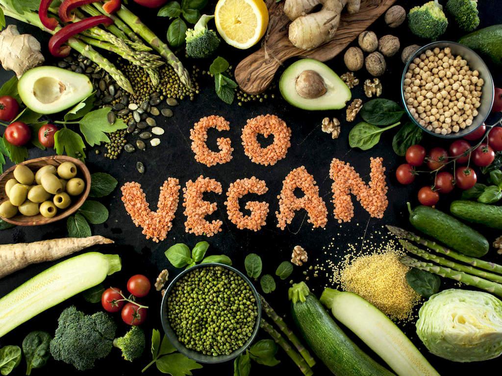 Perbedaan Vegetarian dan Vegan 4