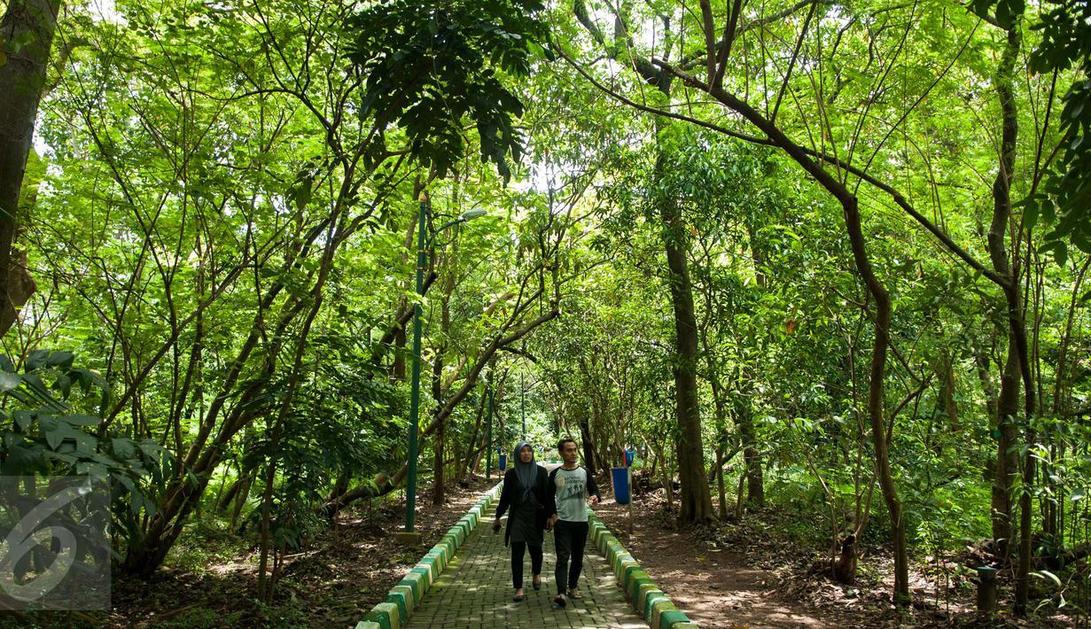 Hutan Kota Srengseng. (Dok. Liputan6)