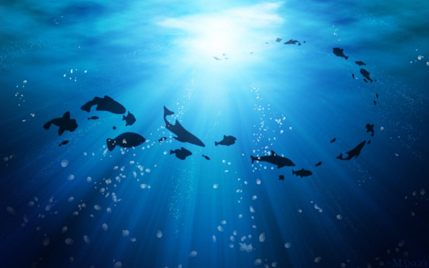 Fosil gelembung dari bawah laut yang terperangkap dalam batuan menjadi bukti kalau kehidupan di bumi pada 3,2 milyar tahun yang lalu hanya berupa lautan. (dok. livescience)