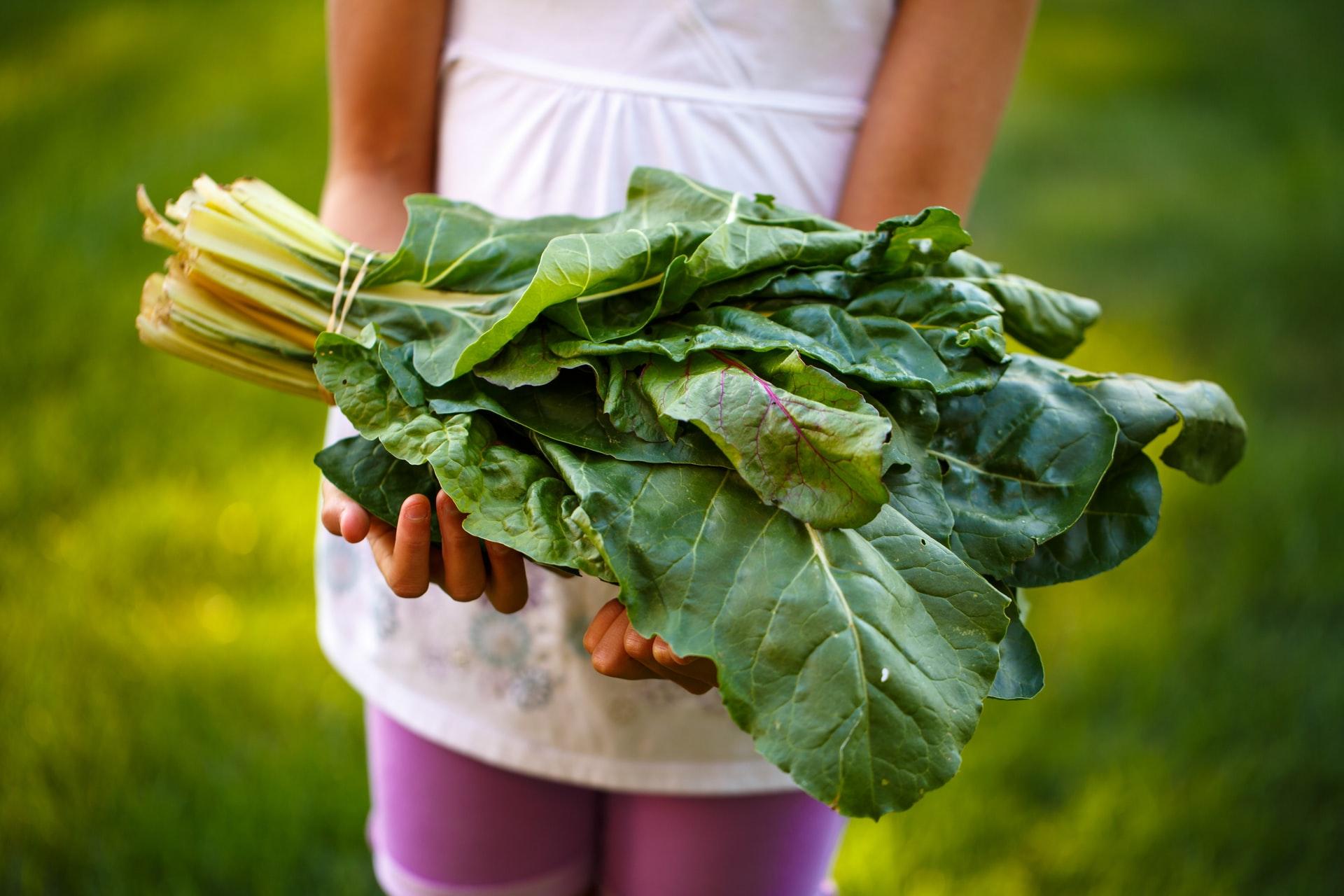 9 Tips Membesarkan Buah Hati yang Menyukai Pola Makan Sehat 5