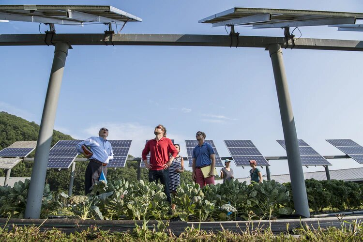panel solar sebagai bentuk produk lembaga swadaya alam