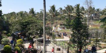 Cimory on The Valley, Wisata Alam di Tengah Hiruk Pikuk Kota Semarang 19