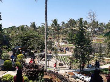 Cimory on The Valley, Wisata Alam di Tengah Hiruk Pikuk Kota Semarang 3