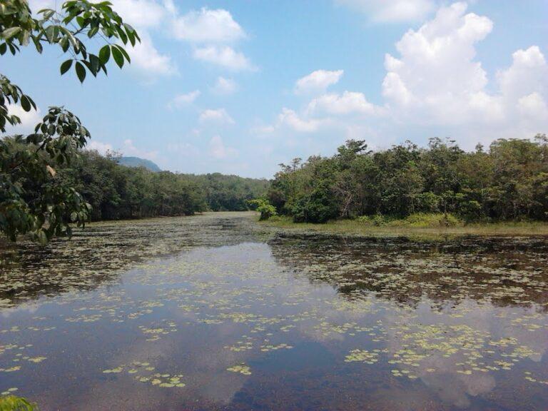 Pesona Danau Aur Surganya Para Pelancong 1