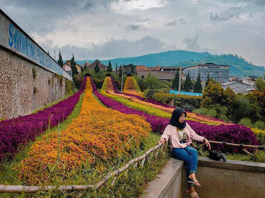 Senang melihat keindahan bunga? kunjungi salah satu dari tempat ini! 5