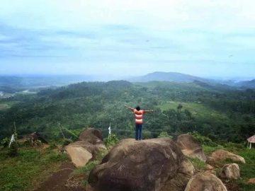 5 Tempat Wisata Menarik di Pekalongan Yang Wajib Dicoba 9