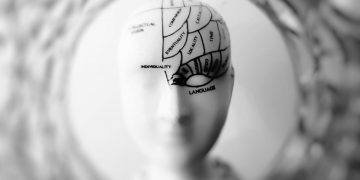 Otak Perasa & Otak Pemikir 10
