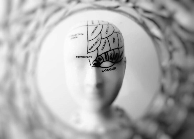 Otak Perasa & Otak Pemikir 1
