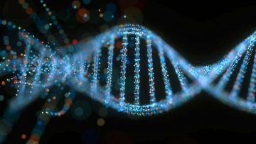 Yuk, Perbaiki Kerusakkan Gen Sedini Mungkin 5