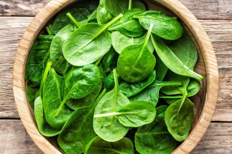 Bayam Sayuran Murah Kaya Manfaat, Apa Saja? Simak Yuk! 1