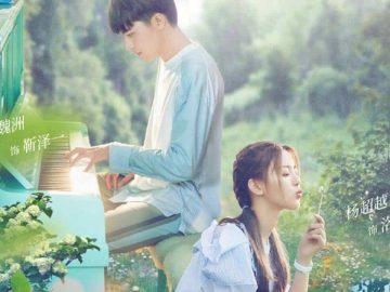 Berawal dari kontrak, Drama China Romantis perjuangan seorang pria mengembalikan ingatan sang kekasih 8