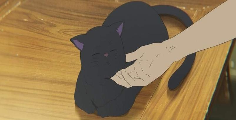 Kucing Hitam Yukichi