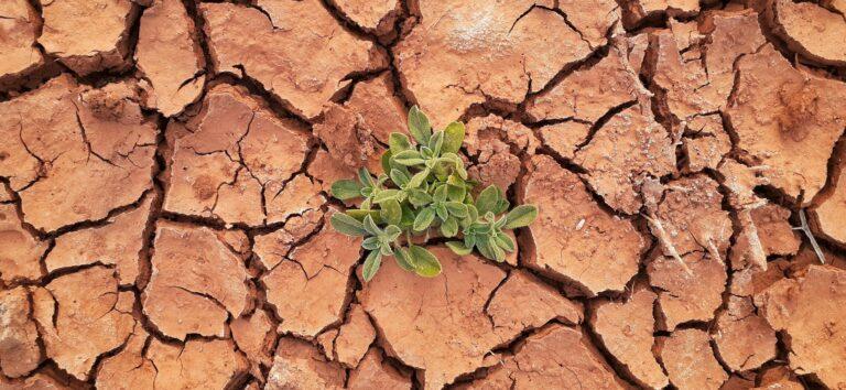 Ketepatan Sistem Penggunaan Lahan Guna Meminimalisir Kerusakan Pada Tanah 1