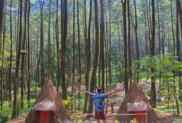 Sekipan Camp Wisata Yang Unik & Bisa Buat Foto Session 1