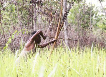 Kegiatan Berburu Hewan oleh Suku Kanume 9